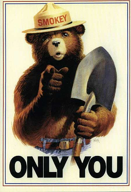 smokey bear ...only YOU can prevent forest fires - 60's  For my science fair project (I think it was 1962-1963, I made a poster image of Smokey Bear all out of wooden matches.  Didn't win, but I thought it was clever anyway!
