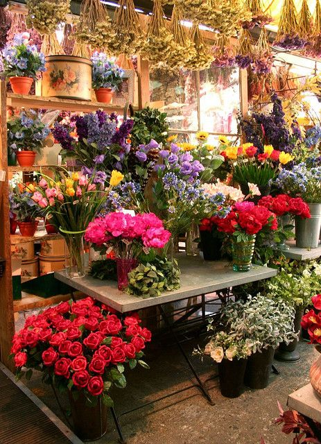 My Dream is to own a Flower Shop that looks just like this!