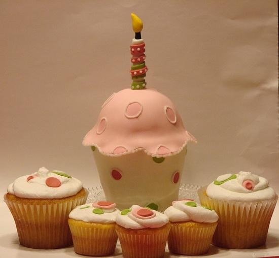 Cupcake Cakelet & Cupcakes