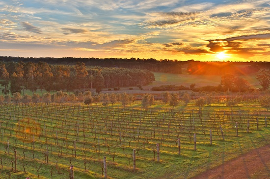 Sunrise Margaret River Winery