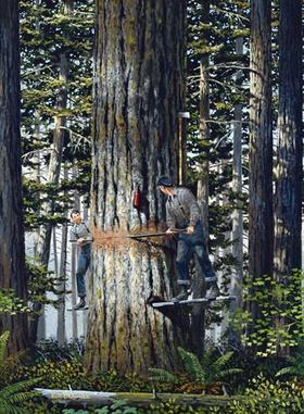 Logging Near Mill Creek by Ken Brauner  kenbrauner.com