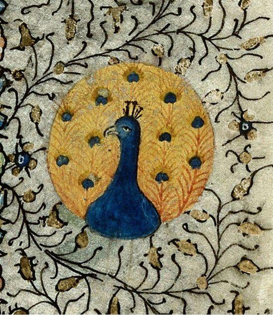 The Textile Cuisine: The birds of Paradise / Rajskie ptaki