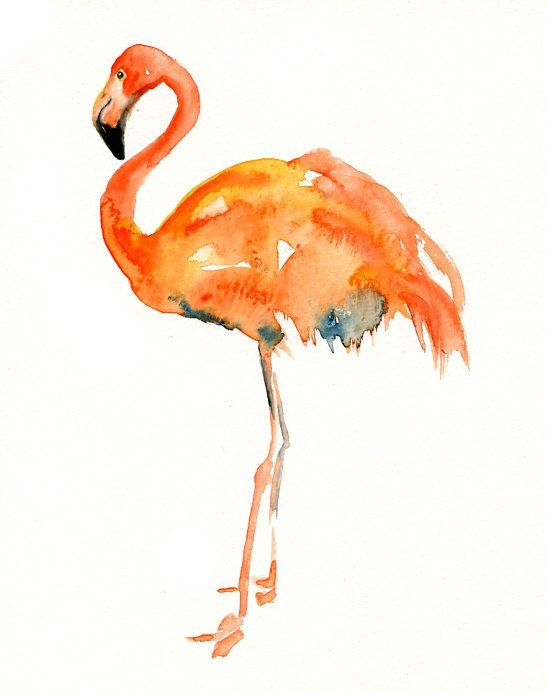 FLAMINGO-11x14inch Print (Large size)-home decor--birds art-Nursery Baby-poster-nature art
