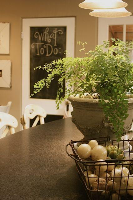 everyday+kitchen.jpg 426×640 pixels