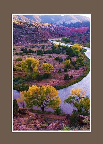 New Mexico Glory    Chama River