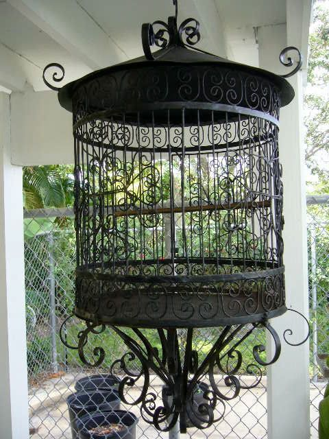 Black Bird cage - paint it white!