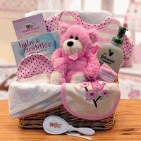 Gift basket 890532-P Organic New Baby Basics Gift Baskets - Pink