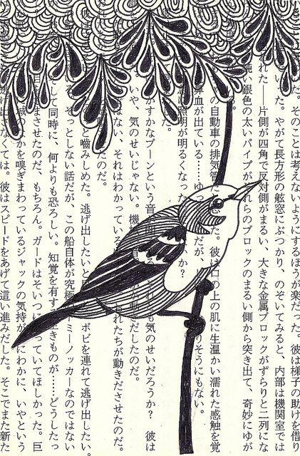 b bird