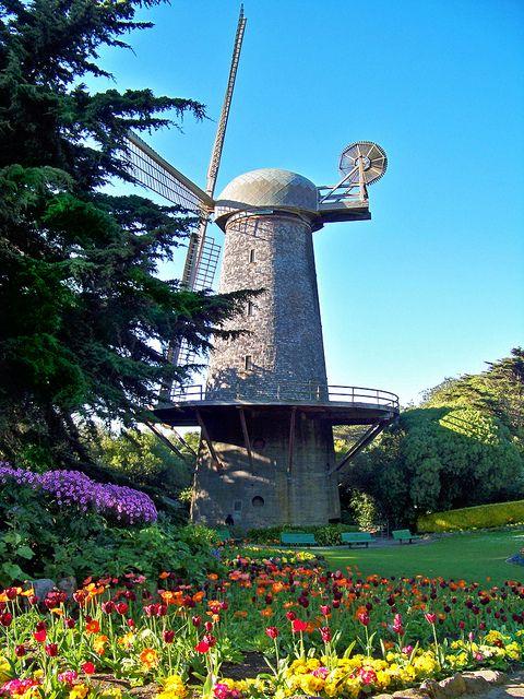 Windmill/Tulip Garden at Golden Gate Park, San Francisco, CA