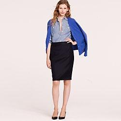 Skirt and Modest Shirt