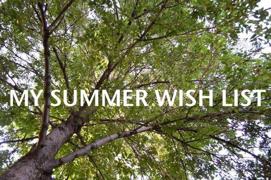 Summer highlights