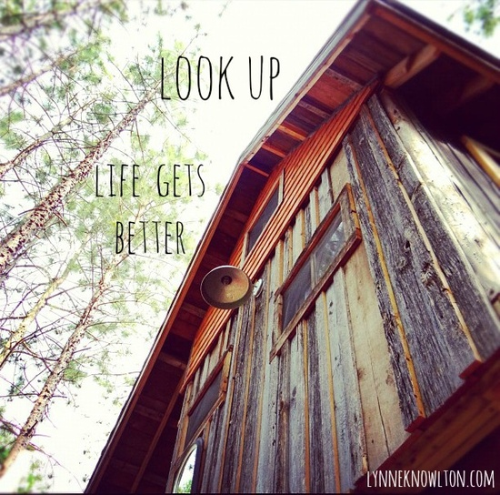 Look up ! Life gets better... especially in a #treehouse. Read more about the recycled, reclaimed barn board treehouse on the blog lynneknowlton.com