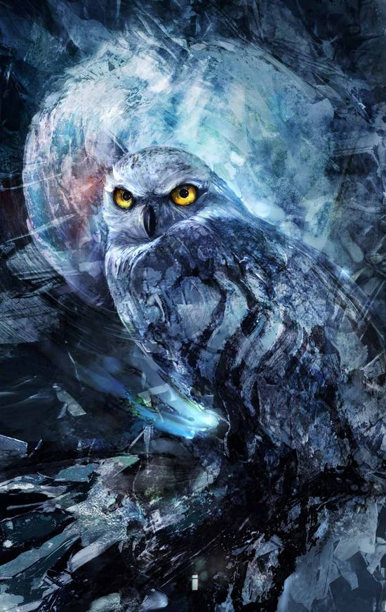 NightOwl by ~ivangod on deviantART