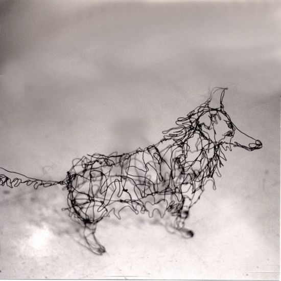Sculpture: Line drawing of a collie, in 3D.