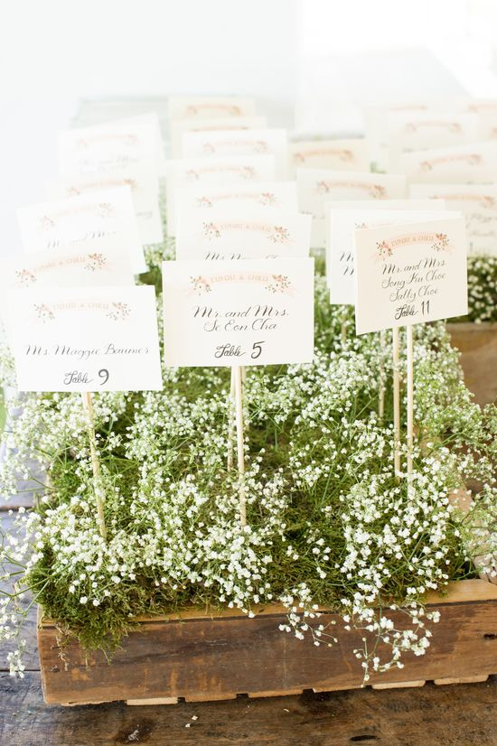 pretty place cards lined up in baby's breath