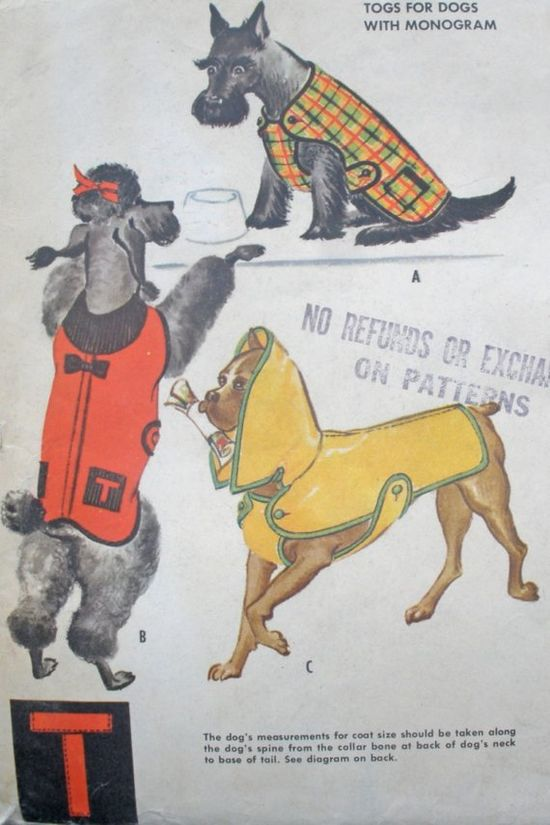 Cuter than cute yesteryear puppy fashions that would look every bit as adorable today. #vintage #pet #costume #dogs #animals #clothing #puppies #1950s #fifties #retro