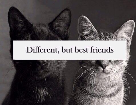different, but best friends