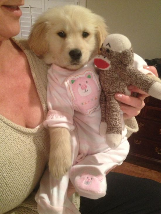pjs and stuffed animals