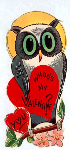 Whoo's my Valentine