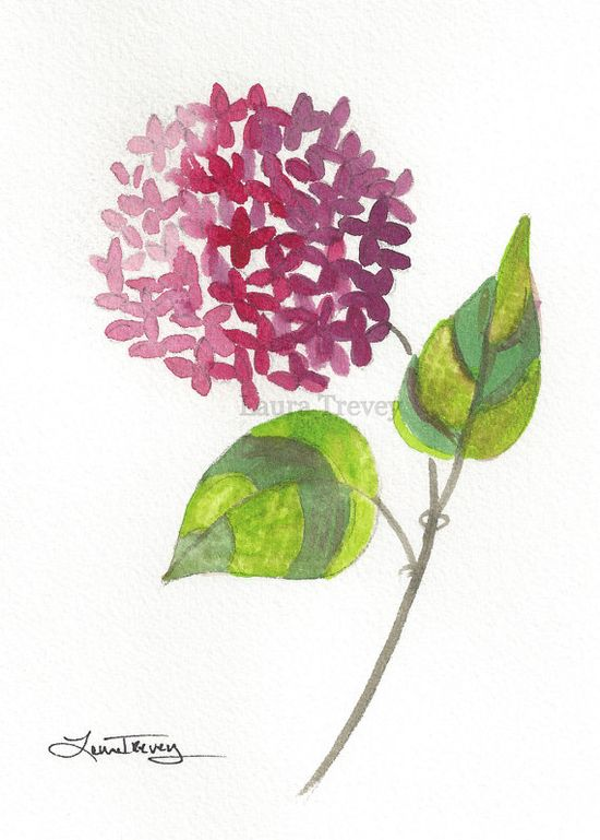Hydrangea Watercolor Painting $35.00