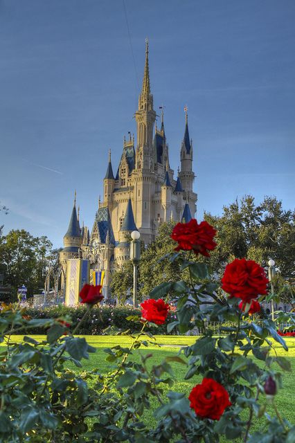 Cinderella Castle From the Rose Garden