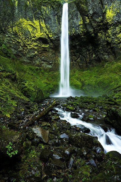 Elowah's Elegance by Chad Dutson on Flickr. McCord Creek, Oregon