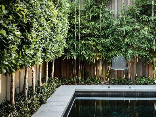 Nathan Burkett – Garden Designer