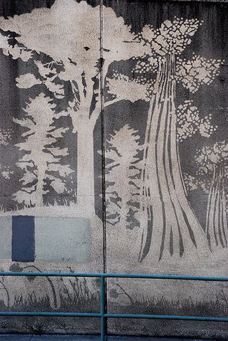 "Reverse graffiti by Paul ""Moose"" Curtis in the San Francisco Broadway tunnel #graffiti ""reverse_graffiti #mural #art #eco"