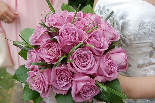 pretty lavender colored roses