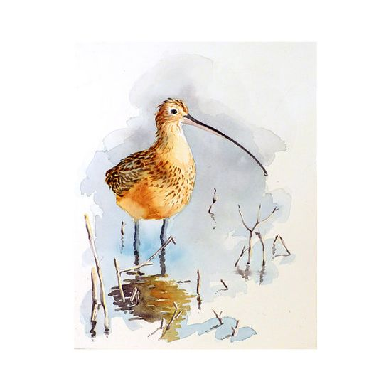 Shore  Bird Art Original Watercolor Painting by LaBerge