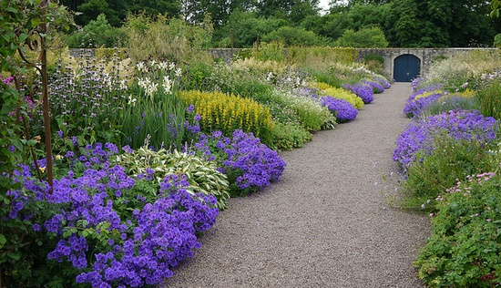 Combination of Perennials, in large groups, strong colour repeating.