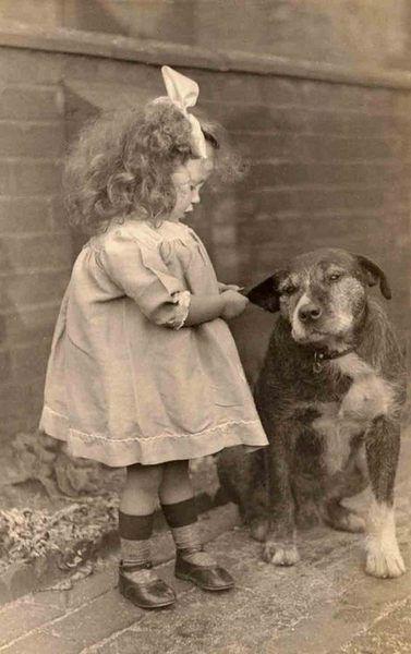 petite fille et son chien très patient