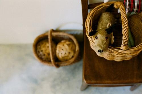 Stuffed animal of antiquity