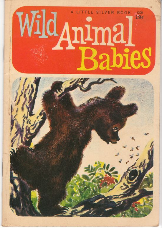 Wild Animal Babies 1958 Vintage Children's Book by BirdhouseBooks at Etsy - illustrated by Feodor Rojankovsky