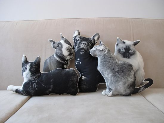 Oh god. NEED a pillow version of my pets. Badly.
