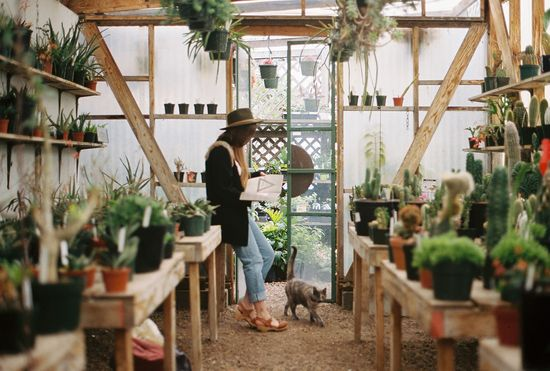 Greenhouse. Want!