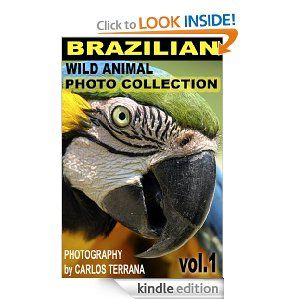 Free today 9.20.2013 Brazilian Wild Animal Photo Collection Vol.