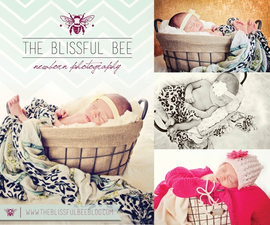 Newborn photography @TheBlissfulBee    www.theblissfulbe... www.creativecodes...