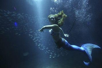 Coolest job: Real Life Mermaids!