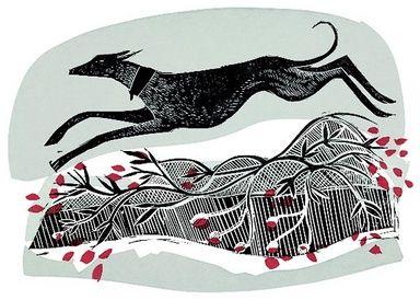Winter Whippet by Angela Harding