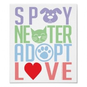 Please support your local animal shelter.