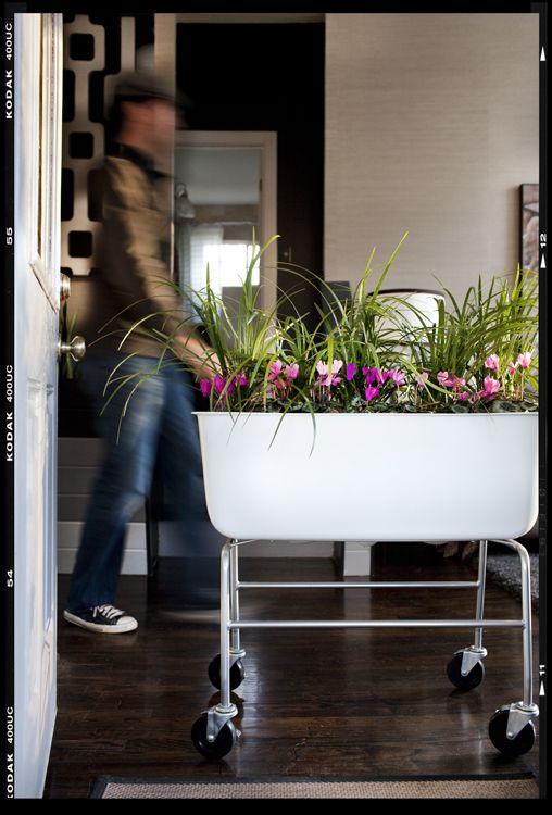 DIY moveable garden