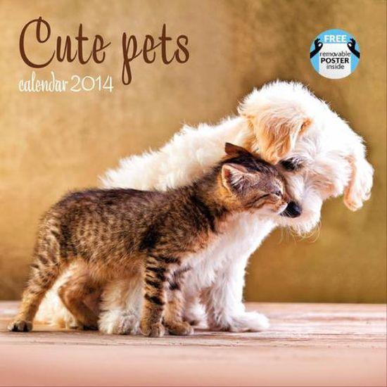CUTE PETS  Calendario Calendar Calendars 2014  - IMACA751