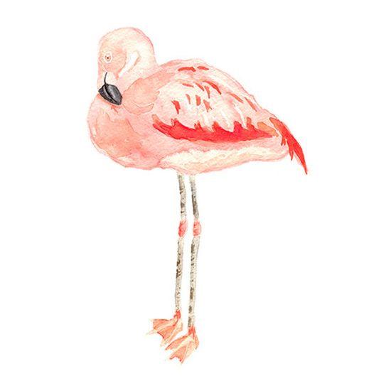 Flamingo Print from Original Watercolor.