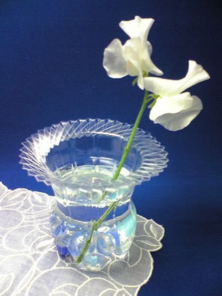 Recycle a Plastic Bottle into a Vase