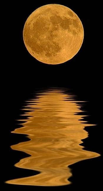 Beautiful picture of a Harvest moon
