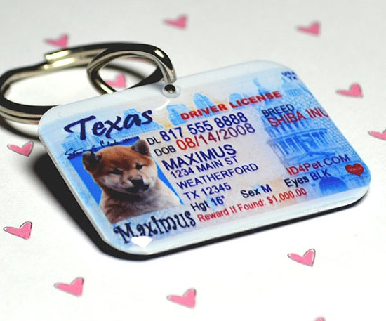 Drivers License pet tag!