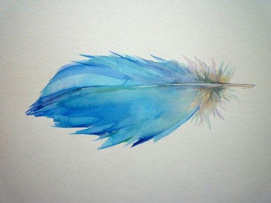 Watercolor feather, tattoo idea