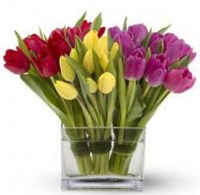 D.I.Y Flower Arrangements