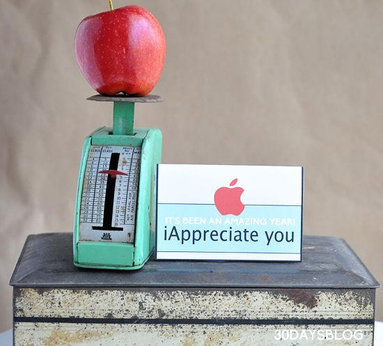 Teacher Gift Idea www.thirtyhandmad...